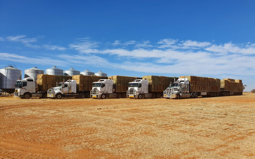 OPERATION FIRE & DROUGHT RELIEF DELIVERS HAY TO FIRE-AFFECTED NSW SOUTH COAST